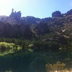 Foxy_Fox_Bariloche_Patagonia_3