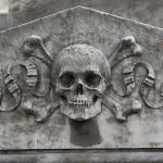 Foxy_Fox_BuenosAires_Skull