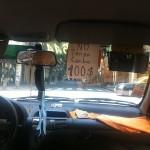 Foxy_Fox_BuenosAires_Cab