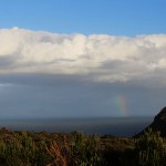 Foxy_Fox_CapeTown_Rainbow