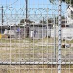 Foxy_Fox_CapeTown_fences