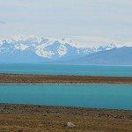 Foxy_Fox_ElCalafate_Lake