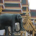 Foxy_Fox_Bangkok_Temple7
