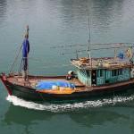 Foxy_Fox_Hanoi_Boat