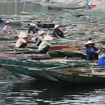 Foxy_Fox_Hanoi_Boats