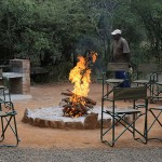 Foxy_Fox_Madikwe_Camp_1