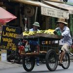Foxy_Fox_Saigon_MobileMarket