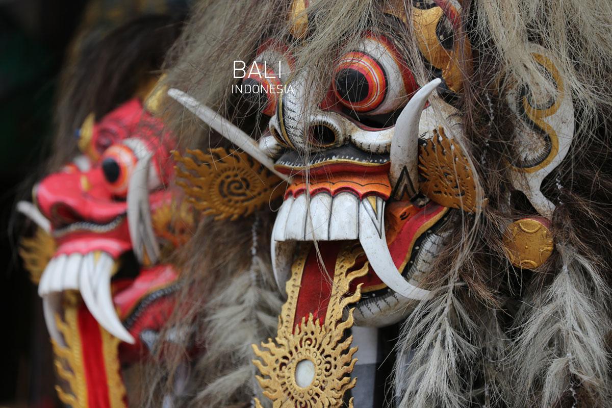 Foxy_Fox_Bali_25