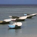 Foxy_Fox_Bali_Boats