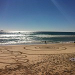 Foxy_Fox_Australia_ByronBay_BeachDesigns