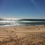 Foxy_Fox_Australia_ByronBay_BeachDesigns