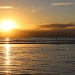 Foxy_Fox_Australia_ByronBay_Sunset
