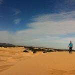 Foxy_Fox_Melbourne_Dunes3