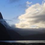 Foxy_Fox_NZ_MilfordSound4