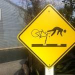 Foxy_Fox_NewZealand_Design_Bike