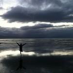 Foxy_Fox_NewZealand_South_Beach