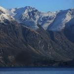 Foxy_Fox_NewZealand_South_Lake