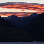 Foxy_Fox_NewZealand_South_SunSet