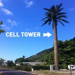 Foxy_Fox_Tahiti_CellTower