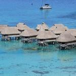 Foxy_Fox_Tahiti_FancyHotel