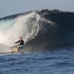 Foxy_Fox_Tahiti_SurfHaapiti