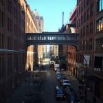 Foxy_Fox_NYC_Overpass