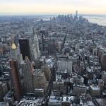 Foxy_Fox_NYC_Skyline