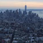 Foxy_Fox_NYC_Skyline2