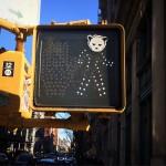 Foxy_Fox_NYC_Walk